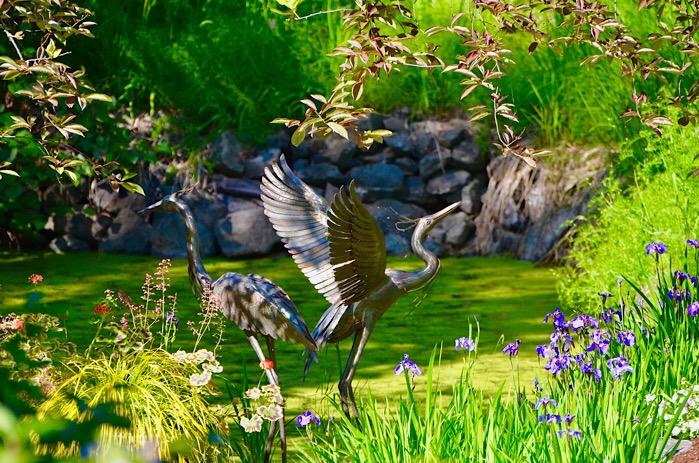 Great Blue Heron Dreams of Summer