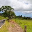 Island Highway