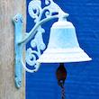 Summer Bluebell