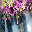 Waterveils